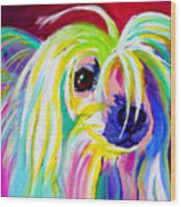 Chinese Crested - Fancy Pants Wood Print by Alicia VanNoy Call