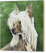 Chinese Crested Wood Print