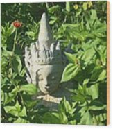 Chinese Garden Gnome Wood Print