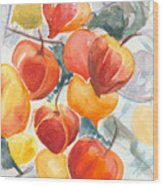 Chinese Lanterns - Symbol Of Friendship Wood Print