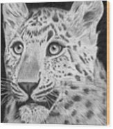 Chinese Panther Wood Print