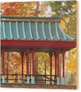 Chinese Pavillion In Tower Grove Park Wood Print