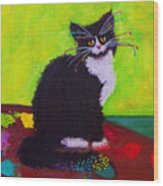 Ching - The Studio Cat Wood Print