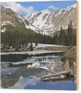 Chinns Lake Reflections 3 Wood Print