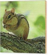 Chipmunk Cheeks Wood Print