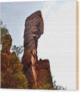 Chiricahua Mountaintop 006 Wood Print