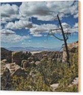 Chiricahua National Monument Wood Print