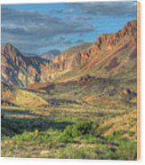 Chisos Mountains Of West Texas Wood Print