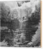 Chittenango Falls 1 Wood Print