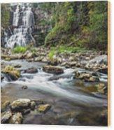 Chittenango Falls  Wood Print