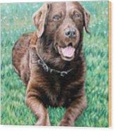 Choco Labrador Wood Print