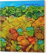 Chocolate Hills Pilippines Wood Print