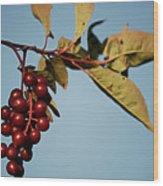 Choke Cherry Wood Print