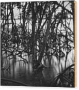 Chokoloskee Mangroves Wood Print