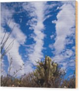 Cholla Blue Sky Wood Print