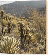Cholla Cactus And Ocotillo Plants Wood Print