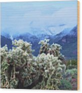 Cholla Cactus And Superstition Mountains Wood Print