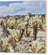 Cholla Desert Garden Wood Print