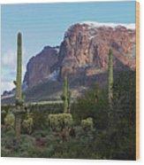 Cholla  Saguaro Superstition Mountain Wood Print