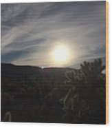 Cholla Sunset Wood Print