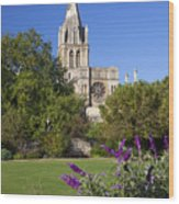 Christ Church Cathedral Oxford University Uk Wood Print