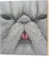 Christinas Kittycat Wood Print