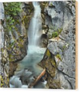 Christine Falls In The Canyon Wood Print