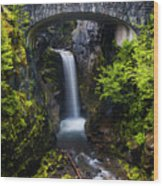 Christine Falls - Mount Rainer National Park Wood Print