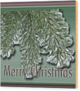 Christmas Arborvitae In Ice Wood Print