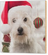 Christmas Elf Dog Wood Print