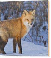 Christmas Fox Wood Print