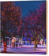 Christmas Lights At Locomotive Park Wood Print