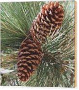 Christmas Pine Cones Wood Print