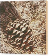 Christmas Pinecone On Barn Floor Wood Print