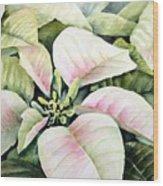Christmas Poinsettias Wood Print by Bobbi Price