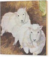 Christmas Sheep Wood Print