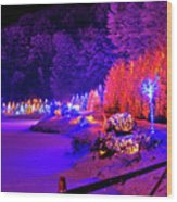 Christmas Trees Row And Frozen Lake View Wood Print