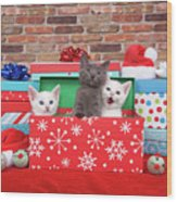 Christmas With Kittens Wood Print