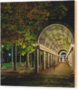 Christopher Columbus Park 3765 Wood Print
