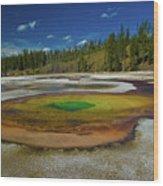 Chromatic Pool Wood Print