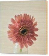 Chrysanthemum #029 Wood Print