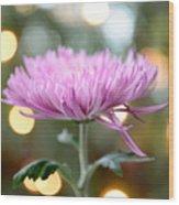 Chrysanthemum Happiness Wood Print
