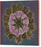 Chrysanthemum Mandala Wood Print