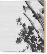 Chrysanthemum Stone 2 Wood Print