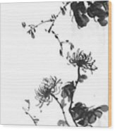 Chrysanthemum With Stone Wood Print