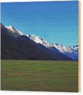 Chugach Mountains Green Plain Wood Print
