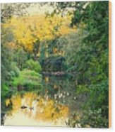 Chunky River Reflections Wood Print