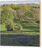 Church Stretton Landscape Wood Print