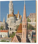 Churches In Budapest Hungary Wood Print