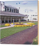 Churchill Downs Paddock Area Wood Print